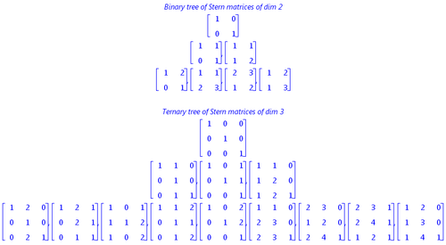 Trees of Stern Matrices.